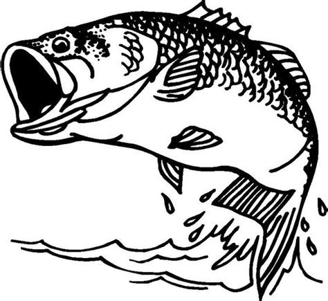pattern drawing fish bass fish clip artbass fish clipart from votes quoteko