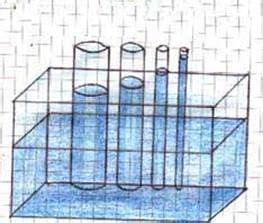 vasi comunicanti capillari vasi comunicanti capillari esperimento e spiegazione