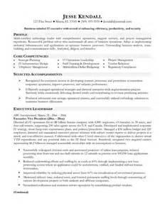 vp of information technology resume sample executive