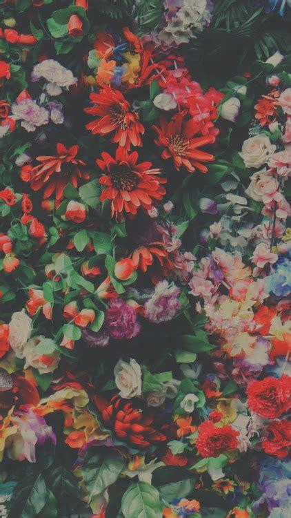 lock screen flowers tumblr