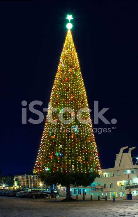 large outdoor christmas lights