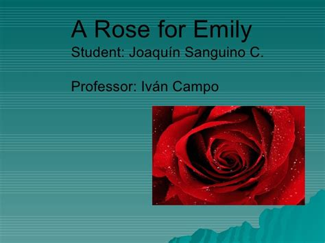 themes a rose for emily essay on a rose for emily symbolism platinum class limousine