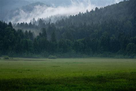 rainy landscape pleeeeease see large on black thank flickr
