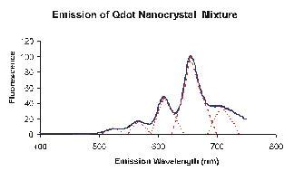 biography of qdot determination of fluorescence excitation and emission