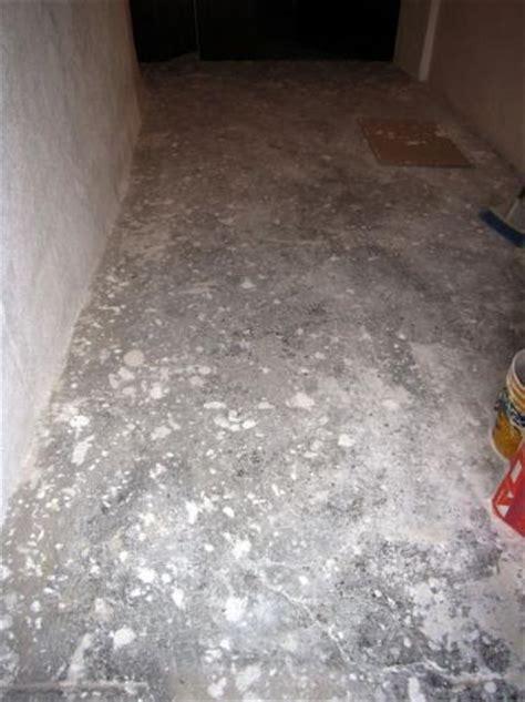 rasatura pavimento arrangiarsi oltre il legno lisciatura rasatura