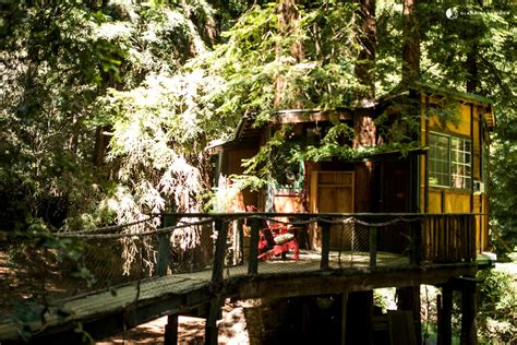 santa cruz tree house gling tree house in santa cruz mountains near monterey bay ca