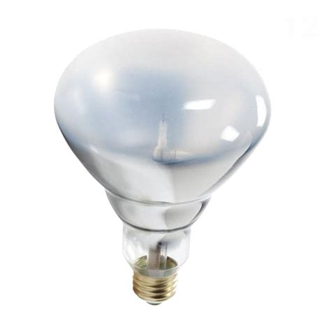 Lu Philips 40 Watt philips 40 watt halogen br40 flood light bulb dimmable
