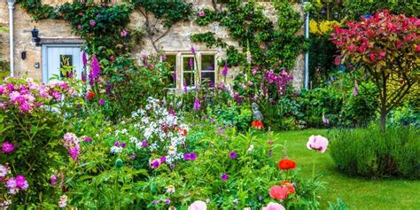 in a cottage garden how to grow a cottage garden