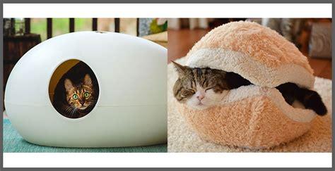 arredamenti gatto cuccia di design per gatti progettazione casa