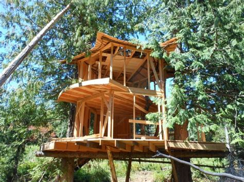 Treehouse Masters Luck O The Cottage by Sunray Kelley S New Treehouse The Shelter