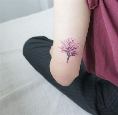 cherry tree tattoo 25 best ideas about cherry tree tattoos on