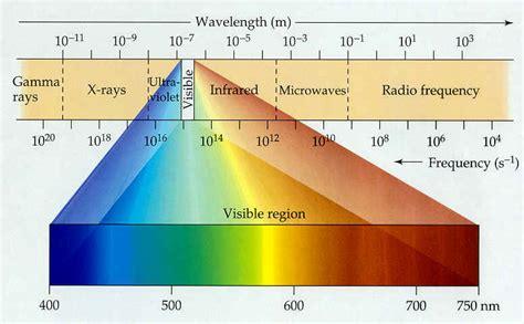 lade spettro solare permafor 234 t canop 233 e les strat 233 gies pour la lumi 232 re