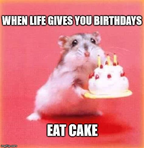 Happy Birthday Cake Meme - top 100 original and funny happy birthday memes eat