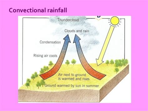 diagram of convectional rainfall convectional rainfall free zimsec revision notes and