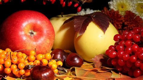 fruit x apple fruits wallpaper hd 1920x1080