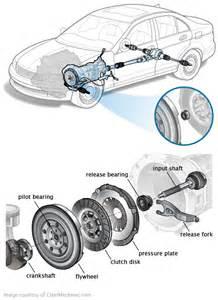 Clutch pilot bearing