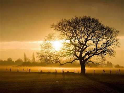 imagenes de paisajes que inspiran tranquilidad fotograf 237 as de paisajes impresionantes