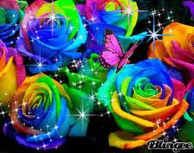rainbow roses picture 84265241 blingee com