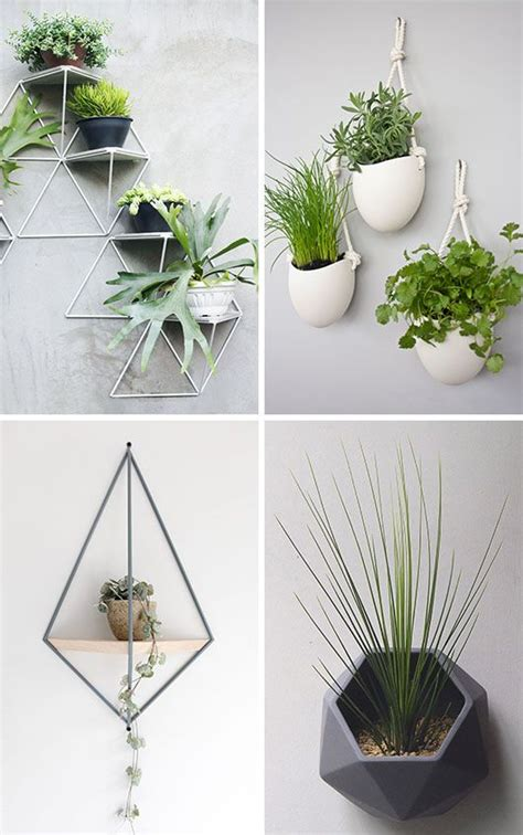 wall mounted planter best 25 wall mounted planters ideas on pinterest small