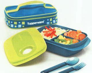 Tupperware Cool N Chic