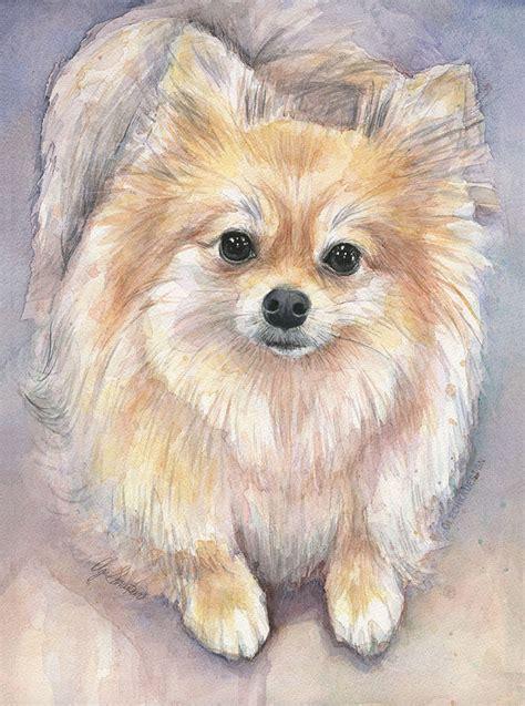 pomeranian drawings pomeranian watercolor print pom painting animal painting pomeranian