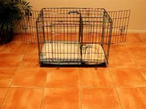 puppy using bathroom in crate 17 best images about crates kennels and such on