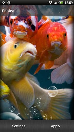 Fish Live Wallpaper Mobile9 by Koi Fish Live Wallpaper Play Softwares