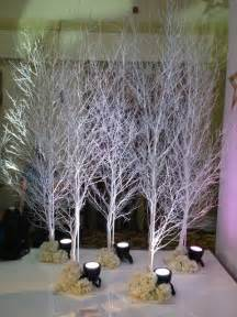 using a birch branch tree for a christmas tree these 10ft white birch trees are for a winter narnia event arts