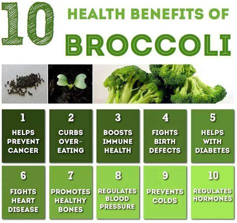 Broccoli Sprouts Helath Benefits Detox by 17 Best Images About Food And Health Benefits On