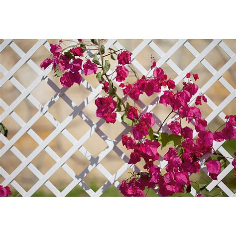celosias de pvc para jardin celos 237 as pvc 100 x 200 cm bauhaus