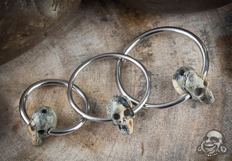 skull captive bead ring titanium captives with fossilized mammoth skull
