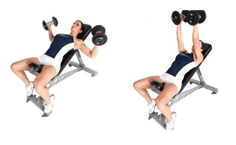 incline bench dumbbell fly 10 chest fly exercise and its benefits bodybuilding estore