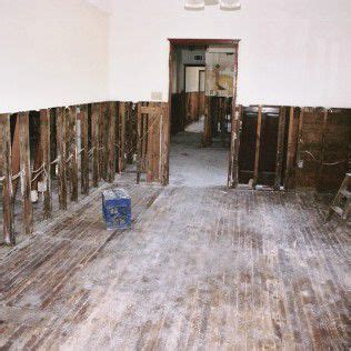 carpet and rug cleaners billings mt b b disaster restoration and carpet cleaning disaster