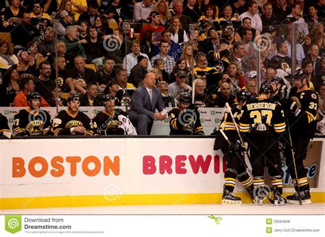 bruins bench claude julien and the boston bruins bench editorial stock