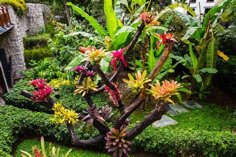 imagenes de jardines turisticos jardines del malec 243 n sim 243 n bol 237 var bienvenidos a