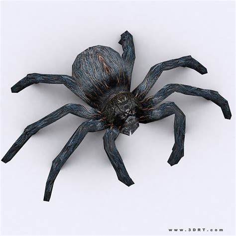 3d Model 3drt Spider Vr Ar Low Poly Rigged Animated 3d Spider