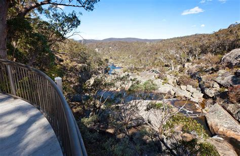 wadbilliga national park nsw national parks