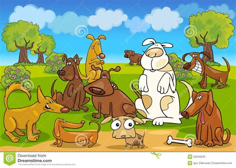 dogs on the dogs on the meadow royalty free stock photo image 25040045