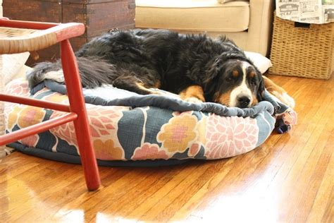 homemade dog beds circular fabric dog bed diy jpg