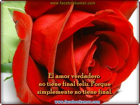 imagenes de rosas rojas con frases de amor pin rosa roja con frases amor para facebook flores rosas