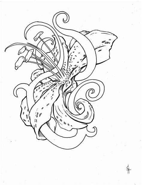 line tattoo designs stargazer lilly design lines by questingraven on