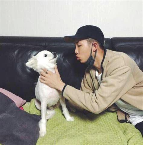kim namjoon dog taehyung and namjoon with dogs k pop amino
