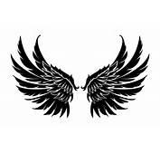 Wings Wallpapers HD Backgrounds  WallpapersIn4knet