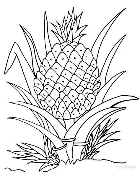 narra tree coloring page pineapple tree clipart 9