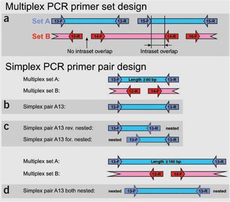 multiplex definition figure 1 multiplex lification of ancient dna nature protocols