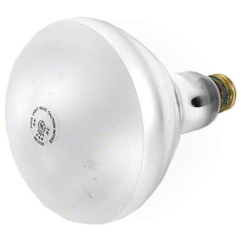 300 Watt Light Bulb by Pentair 300 Watt Bulb 79107600 120 Volt Pentair 79107600