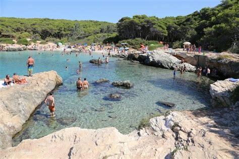 porto selvaggio pineta al fresco picture of spiaggia porto selvaggio