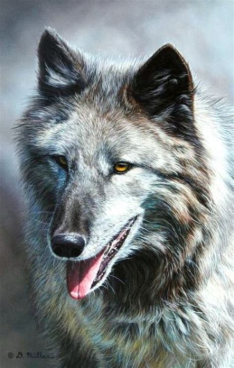 majestic wolf paintings   leave  amazed