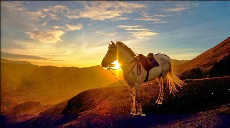 keindahan alam   dinikmati  gunung bromo