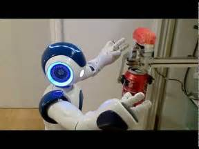 integration of the humanoid robot nao inside a smart home